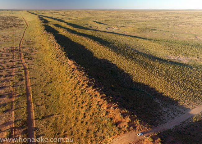 Outback drone photography - on OBE Organic's Adria Downs Station, Birdsville