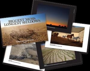 'Biggest Mobs - Longest Shadows' book