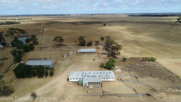 Agricultural Drone Photography, Outback Aerial Photography